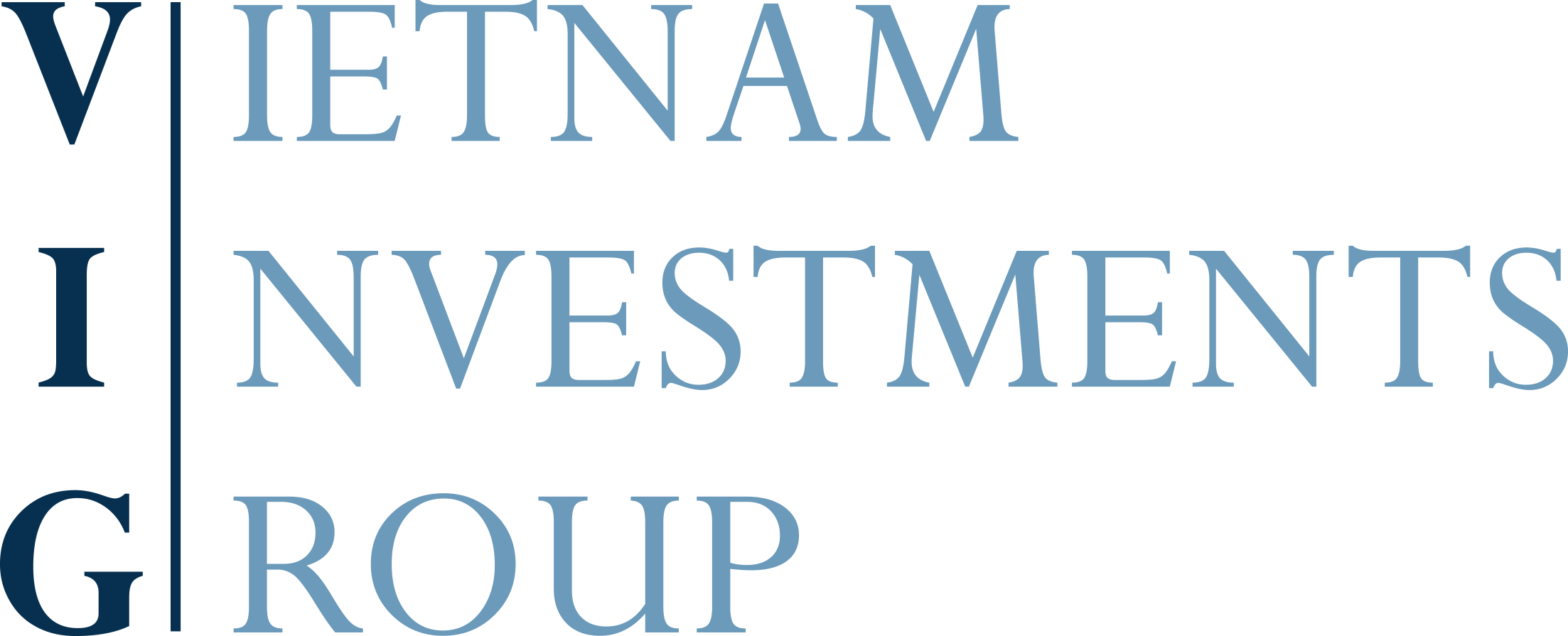 Vietnam Investments Group